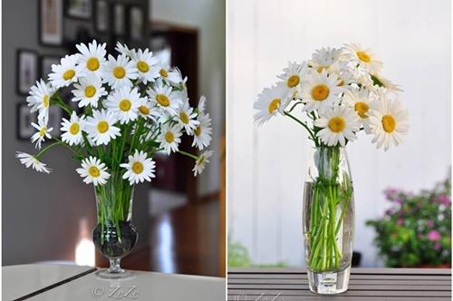 cách cắm hoa cúc vào bình cao